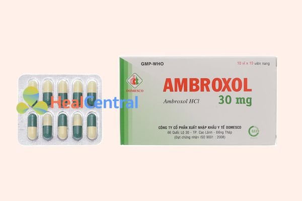 Thuốc điều trị long đờm Ambroxol