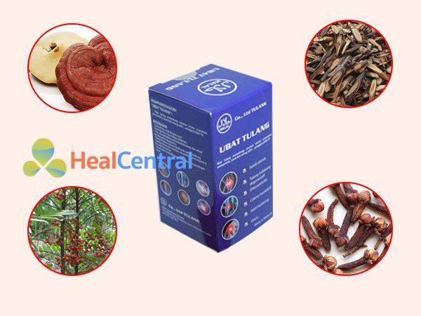 Các thảo dược chính có trong Ubat Tulang