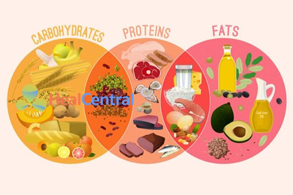 Bữa ăn cần đảm bảo cân đối tỉ lệ tinh bột - đạm - lipid