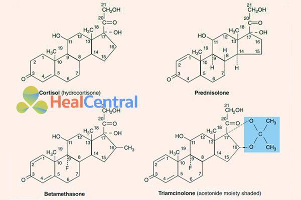 Cấu trúc hóa học của Cortisol nội sinh và một số thuốc glucocorticoid