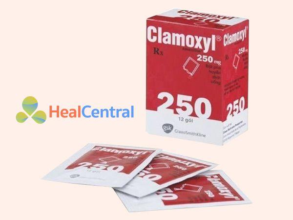 Thận trọng khi sử dụng thuốc Clamoxyl