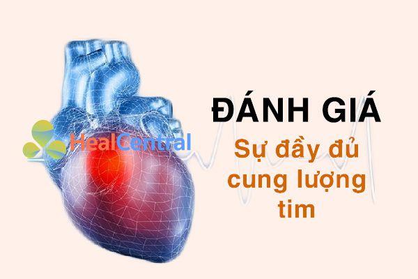 Đánh giá sự đầy đủ cung lượng tim