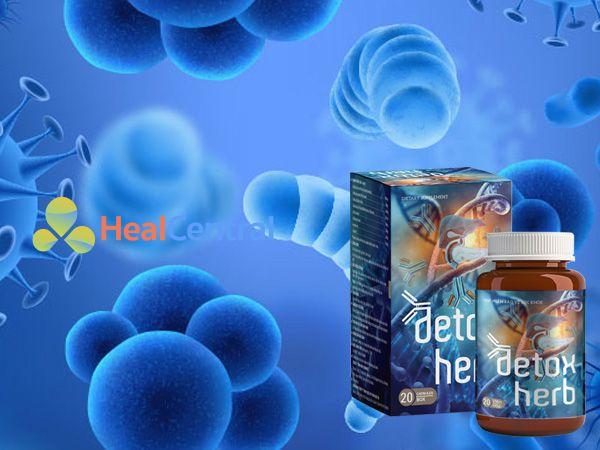Detoxherb - hỗ trợ tiêu diệt ký sinh trùng