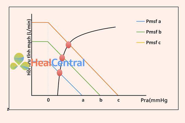 Hồi lưu tĩnh mạch và đường cong Frank-Starling. Pmsf có nghĩa là áp lực đổ đầy hệ thống, Pra áp lực nhĩ phải. Mỗi đường cong hồi lưu tĩnh mạch đại diện cho các mức độ khác nhau của tình trạng thể tích. Để di chuyển qua đường cong hồi lưu tĩnh mạch, cần phải thay đổi chức năng tim, không thay đổi trạng thái thể tích. Đường màu đen đại diện cho đường cong Frank-Starling cho một mức độ cụ thể của chức năng tim. Để chuyển từ đường cong màu xanh sang màu đỏ, Pmsf phải thay đổi từ a sang c mà không thay đổi kháng trở.