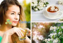 Trà hoa nhài có rất nhiều tác dụng tốt cho cơ thể