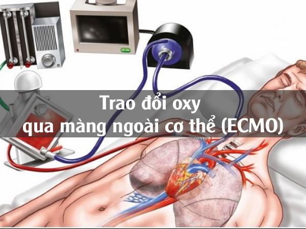 Trao đổi oxy qua màng ngoài cơ thể (ECMO)