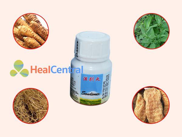 Các thành phần thảo dược có trong Sendimex