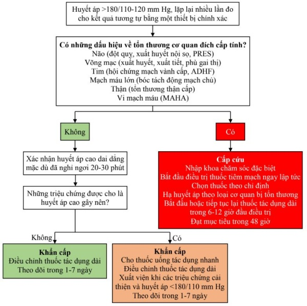Hình 1. Đánh giá và quản lý cơn tăng huyết áp nặng.