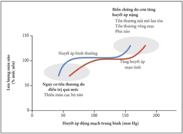 Hình 2. Tự điều hòa lưu lượng máu não và tác động của nó đến điều trị tăng huyết áp cấp cứu.