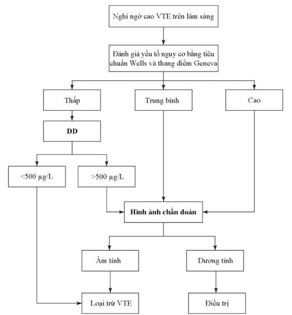 Hình 4.7 Lưu đồ chẩn đoán VTE bằng cách sử dụng DD và hình ảnh học.