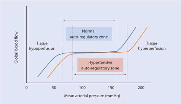 Ảnh hưởng của thay đổi áp lực động mạch trung bình đến lưu lượng máu toàn thân