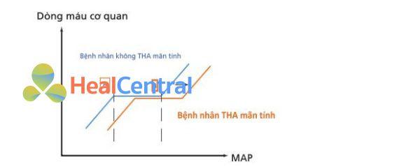 MAP, áp lực động mạch trung bình