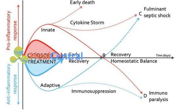 Phản ứng Cytokine sau khi nhiễm trùng huyết