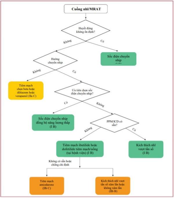 Hình 11 Điều trị cấp cứu cuồng nhĩ ổn định hoặc nhịp nhanh vòng vào lại lớn.