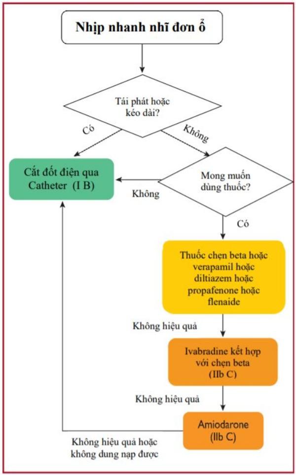 Hình 9 Điều trị mạn tính nhịp nhanh nhĩ đơn ổ. AT = nhịp nhanh nhĩ.