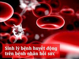 Sinh lý bệnh huyết động trên bệnh nhân hồi sức