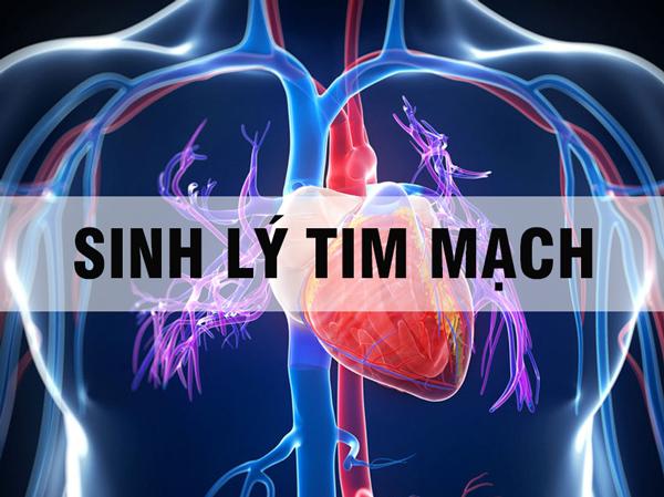 Tài liệu: Sinh lý tim mạch