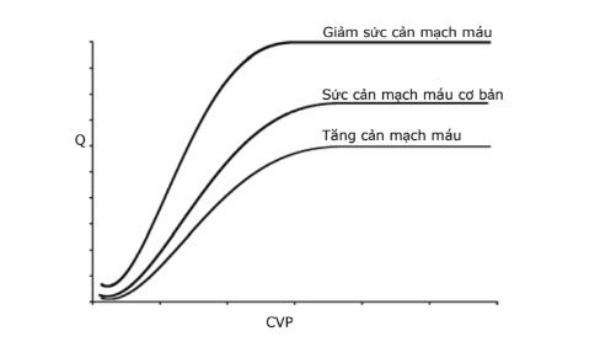 Hình 3. Các đường cong chức năng tim trong các điều kiện kháng lực mạch máu hệ thống khác nhau.