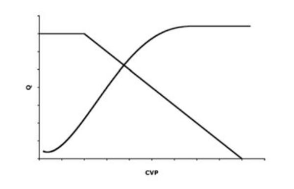 điểm giao cắt lý thuyết giữa đường cong chức năng mạch máu và đường cong chức năng tim