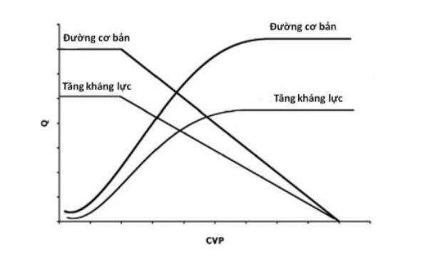 Hình 5. Ảnh hưởng của tăng kháng lực mạch máu hệ thống