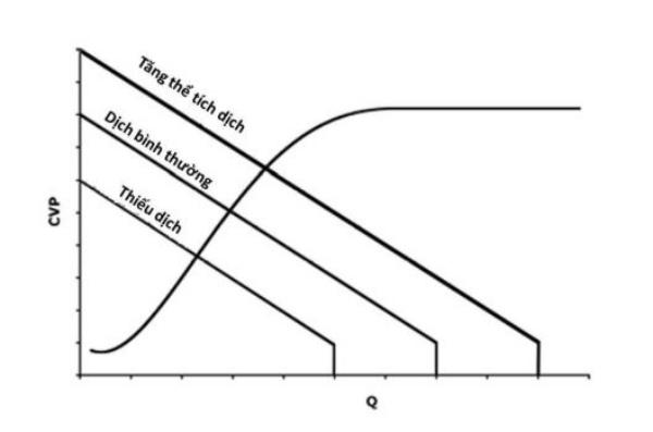 Hình 6. Ảnh hưởng của thể tích nội mạch lên đường cong chức năng tim và mạch.