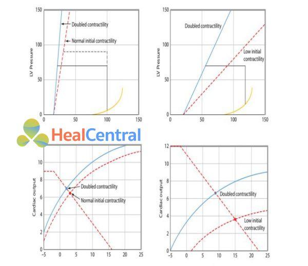 đường cong chức năng tim tương ứng với tương quan áp lực – thể tích