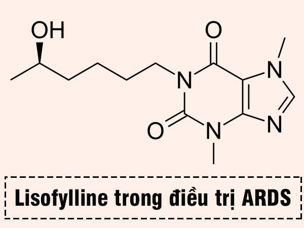 Lisofylline trong điều trị ARDS