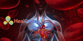 Sử dụng thuốc vận mạch trong Shock nhiễm trùng