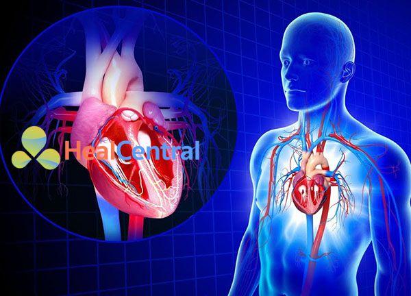 Triệu chứng học tuần hoàn trong ICU
