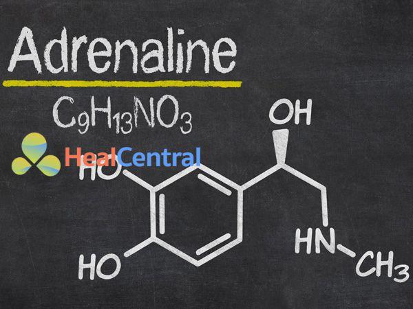 Cấu trúc hóa học của Adrenaline