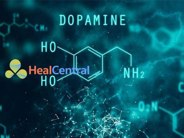 Cấu trúc hóa học của Dopamine