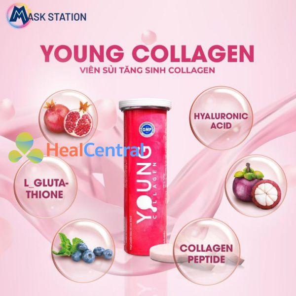 Thành phần viên sủi Young Collagen
