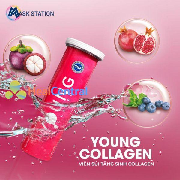 Hình ảnh viên sủi tăng sinh collagen Young Collagen