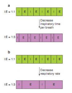 Hình 6.5 Các cách khác nhau để giảm tỷ lệ I:E và tăng thời gian thở ra. (a) Tổng thời gian hít vào và tỷ lệ I: E giảm bằng cách giảm thời gian hít vào của mỗi nhịp thở. (b) Tổng thời gian hít vào và tỷ lệ I:E giảm bằng cách giảm tần số thở. E: thở ra; I: hít vào