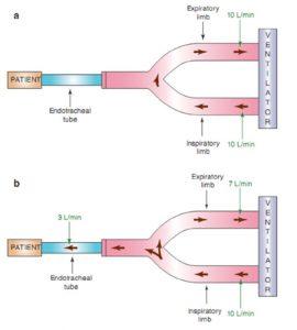 Hình 2.3 Bộ dây máy thở biểu thị cơ chế kích hoạt lưu lượng. (a) Một lượng khí liên tục di chuyển từ nhánh hít vào đến nhánh thở ra của máy thở. Trong ví dụ này, lưu lượng khí liên tục là 10 L/phút. (b) Một nỗ lực hô hấp của bệnh nhân sẽ khiến một số lưu lượng vào bệnh nhân thay vì quay trở lại máy thở. Trong ví dụ này, 3 L/phút lưu lượng vào bệnh nhân, dẫn đến lưu lượng trở lại máy thở ít hơn 3 L/phút. Nếu ngưỡng kích hoạt lưu lượng được đặt ở mức 3 L/phút hoặc ít hơn, nỗ lực hô hấp này sẽ kích hoạt máy thở để cung cấp nhịp thở.