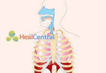 cơ học hô hấp
