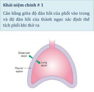 Hình 1.1 Thành ngực đàn hồi hướng ra ngoài và phổi đàn hồi hướng vào trong. Do các lực đối lập này, khoang màng phổi có áp lực dưới áp lực khí quyển vào cuối thời gian thở ra.