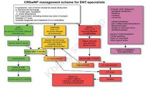 Phác đồ điều trị viêm mũi xoang mạn tính có polyp mũi theo EPOS 2012