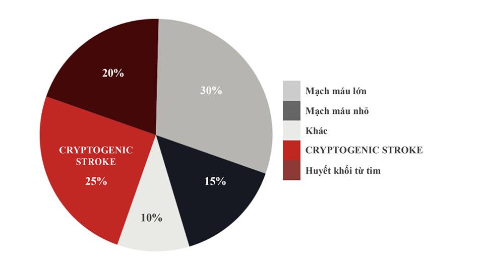 Tỷ lệ của các loại đột quỵ thiếu máu cục bộ