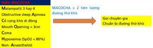 Hình 3. Điểm MACOCHA tiên lượng đường thở khó