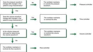 Hình 3.2 Xác định nhịp thở dựa trên cách máy thở duy trì các dạng sóng hít vào. Được sửa đổi từ Chatburn RL. Classification of mechanical ventilators. Respir Care. 1992;37:1009–1025.