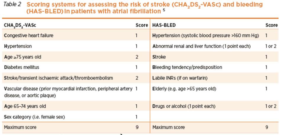 thang điểm CHA2DS-VASc và HAS-BLED