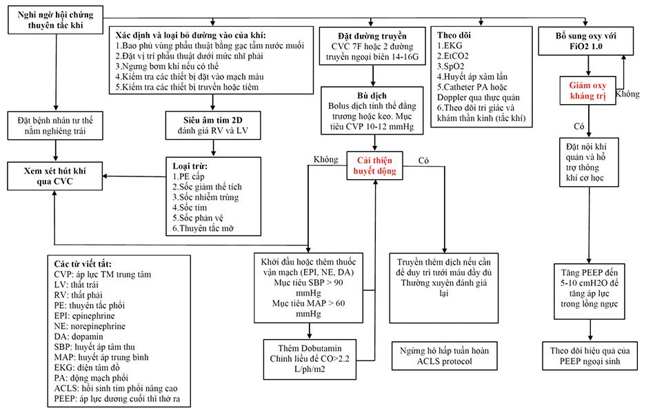 Lưu đồ Quản lý Hội chứng Thuyên tắc Khí