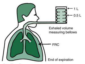 Hình 1.3 Một thiết bị đo thể tích (ống thổi) được sử dụng để minh họa cho việc đo thể tích thở ra.