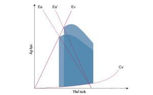 Hình 3 Sơ đồ thể hiện mối liên quan áp suất và thể tích của thất trái. Cv : compliance thất, Ev : độ đàn hồi của thất, Ea : độ đàn hồi của động mạch