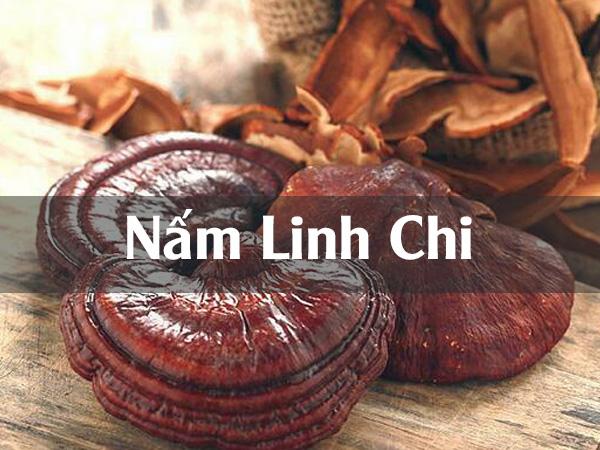 Nấm Linh Chi