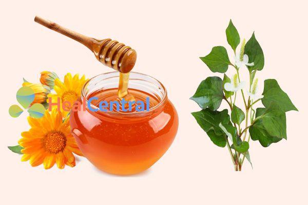 Kết hợp rau diếp cá với mật ong