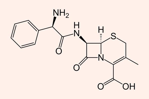 Cấu trúc hóa học của Cephalexin