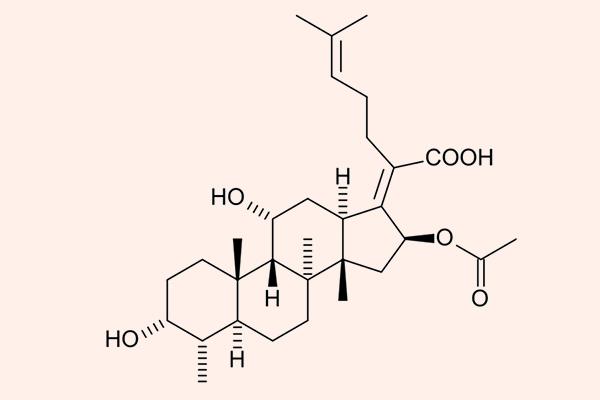 Cấu trúc hóa học của Acid fusidic