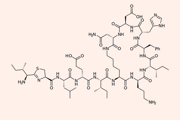 Cấu trúc hóa học của Bacitracin